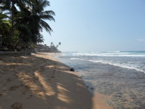 Sri Lanka - Hikkaduwa (18)