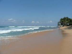 Sri Lanka - Hikkaduwa (22)