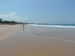Sri Lanka - Hikkaduwa (41)