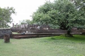Sri Lanka - Polonnaruwa (10)