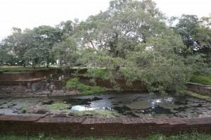 Sri Lanka - Polonnaruwa (2)