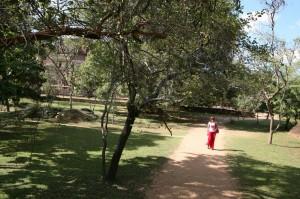 Sri Lanka - Polonnaruwa (70)