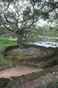 Sri Lanka - Polonnaruwa (8)