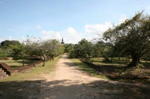Sri Lanka - Polonnaruwa (94)