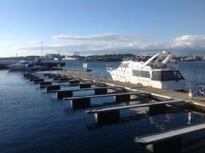 Stavanger Norwegia (138)