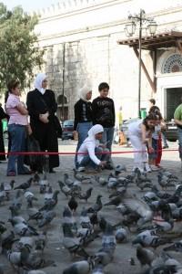 Syria - Damaszek (106)