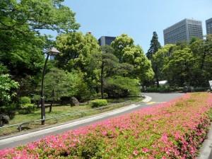 Tokio - Japan (563)