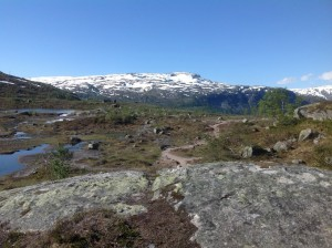 Trolltunga - Język Trolla Norwegia (29)