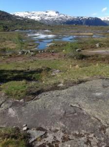 Trolltunga - Język Trolla Norwegia (35)
