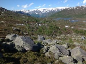 Trolltunga - Język Trolla Norwegia (38)