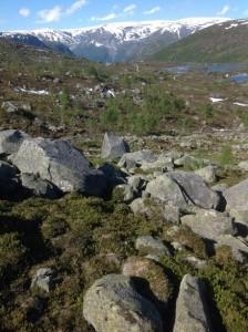 Trolltunga - Język Trolla Norwegia (41)