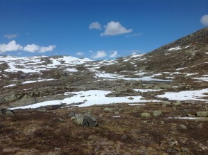 Trolltunga - Język Trolla Norwegia (94)